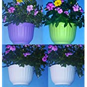 "Wall Hanging Self Watering Planter-White,Fruit Green & Purple Colors10""x5.9""(set Of FOUR;anycolor Combination)"