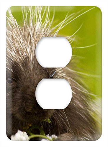 WaPlate - PORCUPINE - Switch Plate Outlet Cover