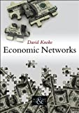 Economic Networks (PESS - Polity Economy and Society Series)