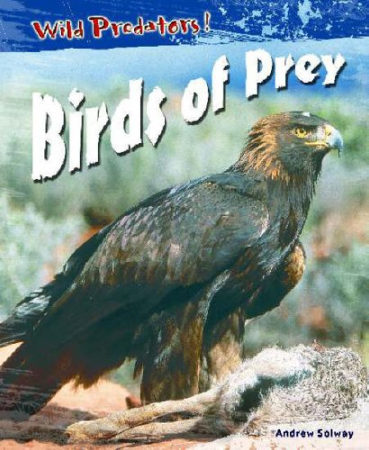 Birds of Prey  (Wild Predators)