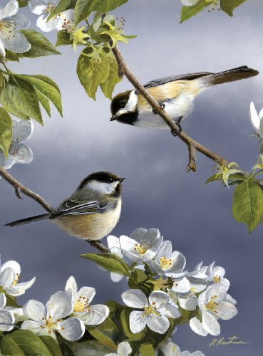 reeves-painting-by-numbers-artist-collection-spring-chickadee-medium