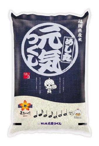 【精米】福岡県産 白米 元気つくし5kg 平成23年産