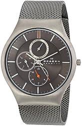 Skagen Men's SKW6036 Grenen Quartz/Multi Titanium Gray Watch