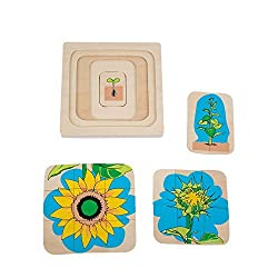 Montessori Materials Sunflower Development Puzzle for Early Preschool Learning Toy