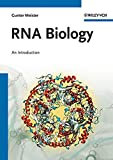 img - for RNA Biology book / textbook / text book
