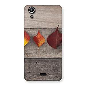 Delighted Leaves on Wood Back Case Cover for Micromax Canvas Selfie Lens Q345