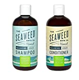 Seaweed Bath Co Balancing Eucalyptus Plant and Peppermint Organic Natural Shampoo and Conditioner Bundle With Argan Oil, Sustainable Bladderwrack Seaweed, Aloe Vera & Essential Oils, 12 fl. oz. each