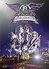 エアロスミス ロックス・ドニントン 2014【通常盤DVD/日本語字幕付】