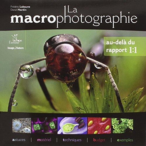 la-macrophotographie-au-dela-du-rapport-11-astuces-materiel-techniques-budget-et-exemples