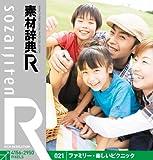 素材辞典[R]021 ファミリー・楽しいピクニック