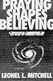 img - for Praying Shapes Believing: A Theological Commentary on the Book of Common Prayer book / textbook / text book