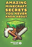 Minecraft Books Amazing Minecraft Secrets You Never Knew About