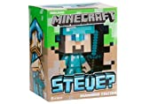 Minecraft Diamond Steve Vinyl 6