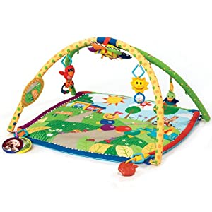 Baby Einstein Seek & Discover Activity Gym