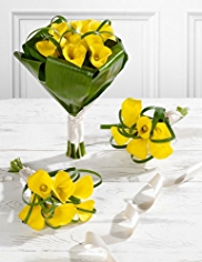 Yellow Wedding Calla Lily Collection 1