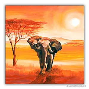 Mia Morro Massai Afrika