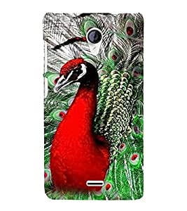 PrintVisa Peacock Design 3D Hard Polycarbonate Designer Back Case Cover for Micromax Unite 2 A106