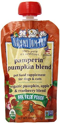 nummy-tum-tum-organic-pampering-pumpkin-blend-4-ounce-pack-of-12