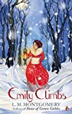 Emily Climbs: A Virago Modern Classic (Emily Trilogy Book 2)