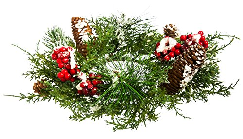 Cypress Home Frosted Pine Cone and Berry Tabletop Floral Decor (Holiday Table Centerpieces compare prices)