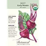 Beet Early Wonder Certified Organic Seed