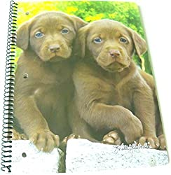 Keith Kimberlin Spiral Notebook Chocolate Labs on Stone Wall (70 Sheets, 140 Pages; 8 x 10.5)