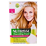 Nutrisse Nourishing Foam by Garnier Honey Blonde 8.3