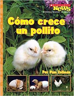 Amazon.com: Como Crece un Pollito = A Chick Grows Up (Scholastic News