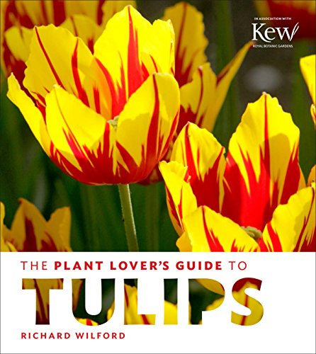 the-plant-lovers-guide-to-tulips-the-plant-lovers-guides