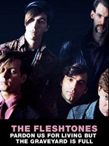 THE FLESHTONES DOCUMENTARY