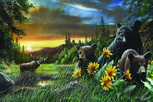 "River's Edge ""Basking in the Balsamroot"" by Kevin Daniel LED Lighted Gallery Wrapped Canvas Art, 24″ X 16″"