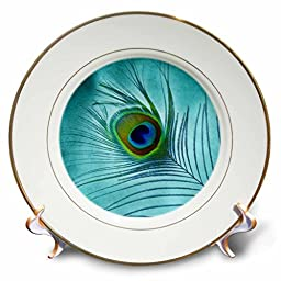Doreen Erhardt Birds - Peacock Feather on Turquoise Background - 8 inch Porcelain Plate (cp_211236_1)