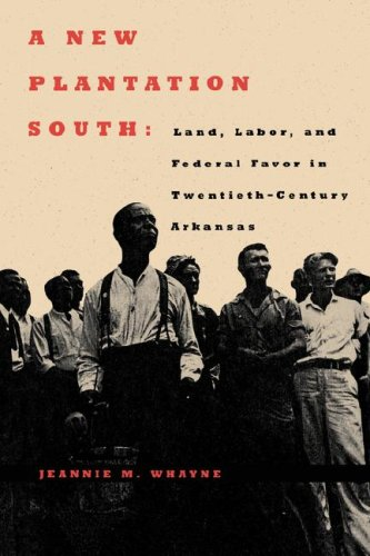 A New Plantation South: Land, Labor, and Federal Favor in Twentieth-Century Arkansas (Carter G. Woodson Institute Series