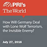 How Will Germany Deal with Lone Wolf Terrorism, the Invisible Enemy? | Fatma Tanis