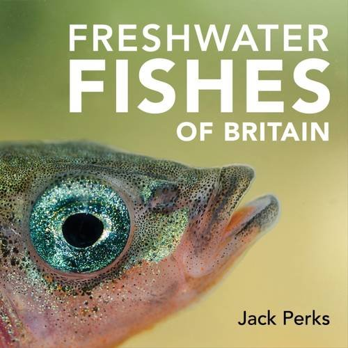 freshwater-fishes-of-britain