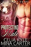 Protecting a Mate (BBW Paranormal Werebear Romance) (Quick & Furry Book 7)