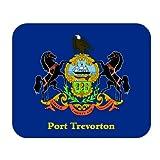 US State Flag - Port Trevorton, Pennsylvania (PA) Mouse Pad