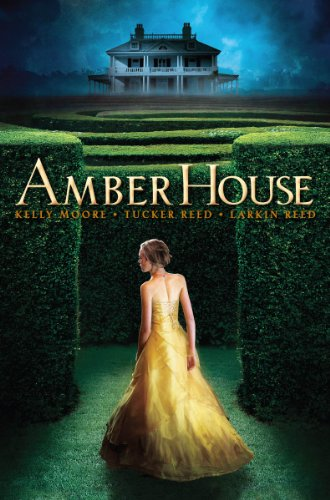 Cover of Amber House