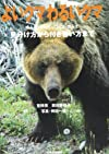 よいクマわるいクマ―見分け方から付き合い方まで