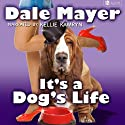 It's a Dog's Life: A Romantic Comedy with a Canine Sidekick Audiobook by Dale Mayer Narrated by Kellie Kamryn