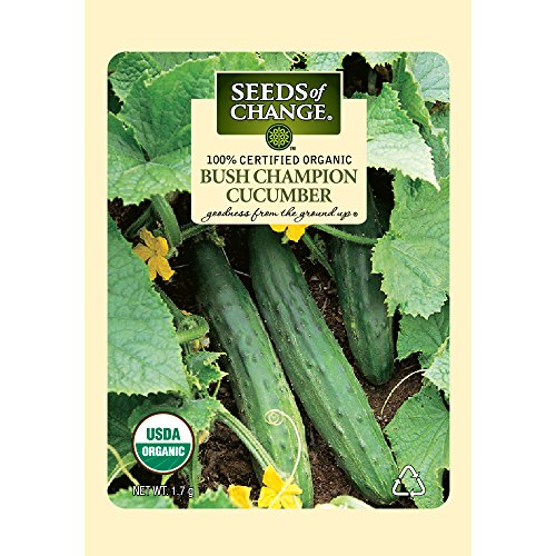 Seeds of Change Certified Organic Cucumber, Bush Champion - 1.7 grams, 55 Seeds Pack