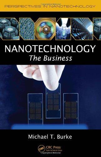 Nanotechnology: The Business (Perspectives In Nanotechnology)