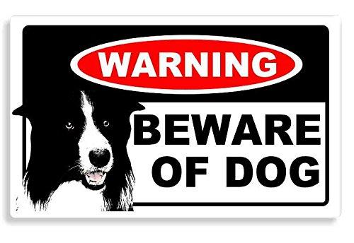 border-collie-dog-beware-sticker-cane-auto-adesivi-porta-di-casa-home-door-car-sign