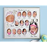 Collections Etc My First Year Baby Picture Frame