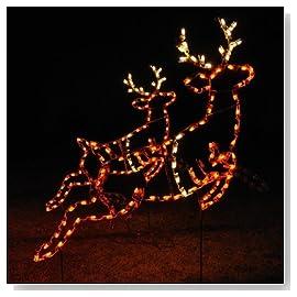 Animated Reindeer Light (Set of 2)