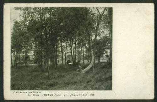 Horse & buggy in Pounds Park Chippewa Falls WI undivided back postcard 1900s (Chippewa Falls Wi compare prices)