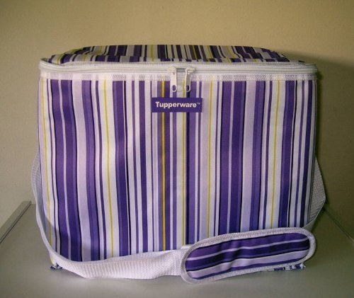 Tupperware Limited Edition Insulated Picnic Cooler Bag (Large)
