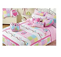 Pink Owl 3-piece Quilt Bedding Set, FULL OR QUEEN, Great For Girls Bedroom. 100% Cotton! (Queen)