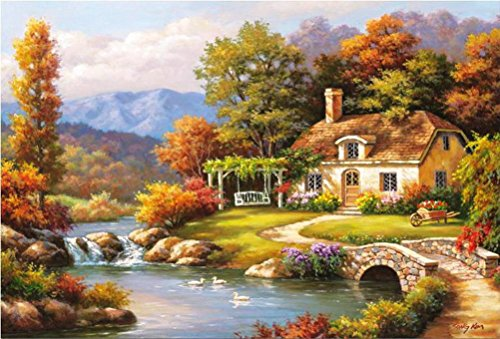 DIY Oil Painting, BlueTop PaintWorks Paint By Number Kits,Idyllic Scenery,20*16Inches