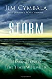 img - for Storm: Hearing Jesus for the Times We Live In book / textbook / text book